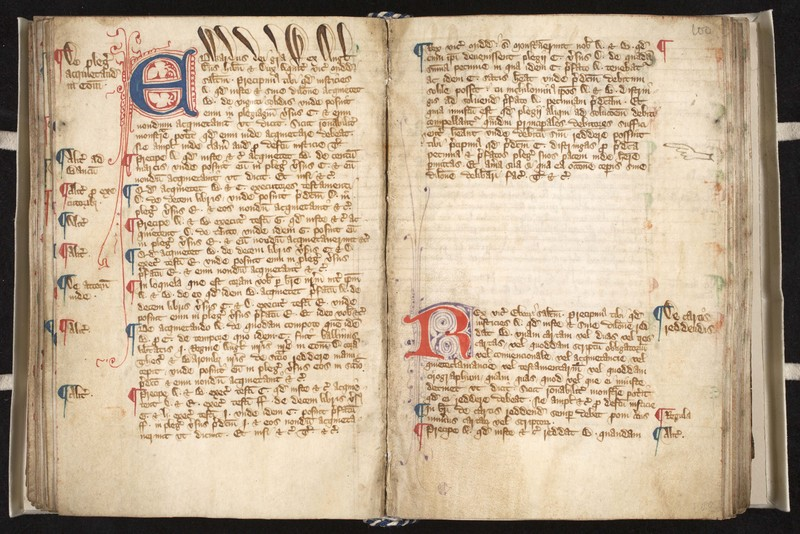 Registrum brevium [Register of Writs], with additional minor legal texts in Latin, Middle English and French. England, circa 1375, with additional items after<br />