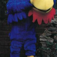 Hal Sandy Wearing a Jayhawk Mascot Costume, 1998
