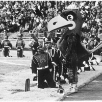 Jayhawk mascot, wearing a hat, interacting with the Marching Band during the Homecoming football game, 1966