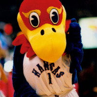 Big Jayhawk at the UNC Asheville basketball game, 1996