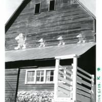 Fighting Jayhawks on a barn, 1971