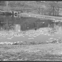 UDKS Floating in Potter Lake