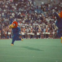 Big Jay and Baby Jay at KU vs. KSU Football Game, 1994