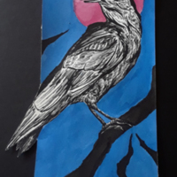 Mourning Crow