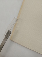 6_Local stain reduction using Gellan gum.jpg