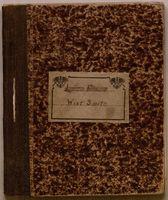 World War I Diary of Lt. Wint Smith