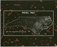 Hogs, 1967