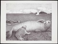 Harbor Seal with nursing pup