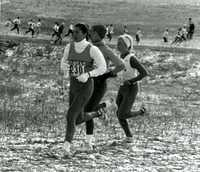 Team during a race in snow