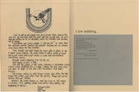 Opening pages 2.jpg